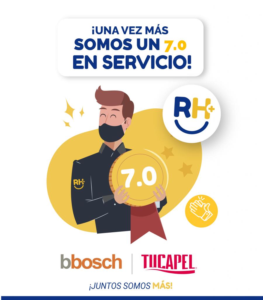 7.0 servicio 08